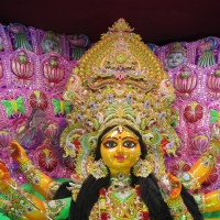 Durga Puja Celebration 2016...